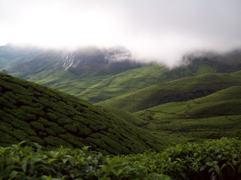 Munnar Tourist Attractions - Kolukkumalai